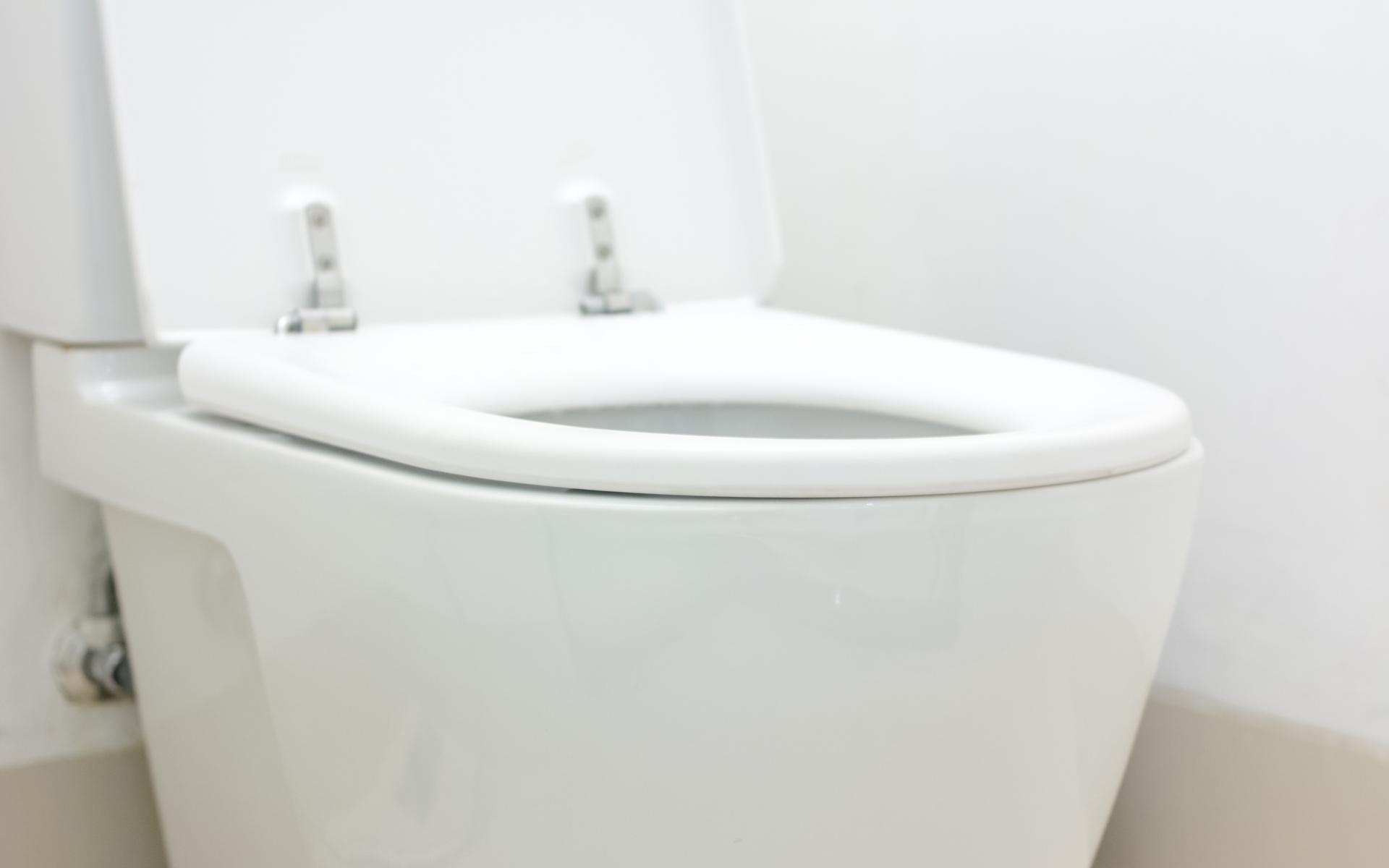 Philadelphia Toilet Repair